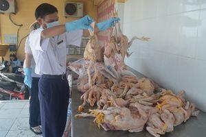 Bắt quả tang xe tải chở 130kg gà đông lạnh chưa kiểm dịch đưa vào TP.HCM