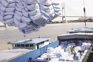 Xuất khẩu nông sản 'cất cánh' sau 5 năm tái cơ cấu?
