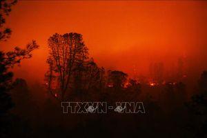 1.010 người mất tích trong thảm họa cháy rừng ở California