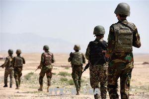 Quân đội Afghanistan tiêu diệt hàng chục phiến quân Taliban