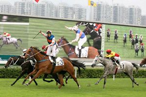 Làm trường đua ngựa 500 triệu USD, Hà Nội thu thuế trăm triệu USD/năm