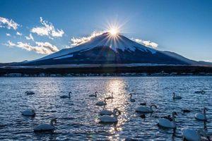 Chiêm ngưỡng vẻ đẹp hoang sơ, hùng vỹ của núi Phú Sỹ