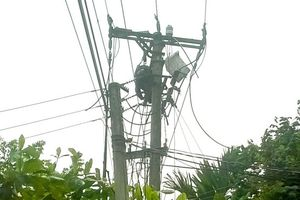 Phú Thọ: Trèo lên cột điện bắt ong, người đàn ông bị điện giật tử vong