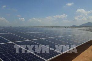 Các dự án điện mặt trời Khánh Hòa sẽ đưa vào vận hành năm 2019
