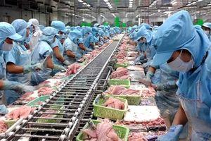 Doanh nghiệp nhập khẩu hải sản kêu cứu do 'tắc' tại cảng