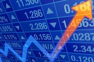 Top 10 cổ phiếu tăng/giảm mạnh nhất tuần 12-16/11