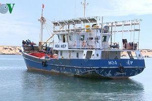 Vay 'tín dụng đen' sửa chữa tàu cá, ngư dân Phú Yên thêm gánh nặng