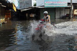 TP HCM khẩn trương triển khai biện pháp ứng phó bão số 8
