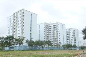 Đà Nẵng: Sở hữu 1-2 lô đất vẫn thuộc diện được thuê chung cư ưu đãi