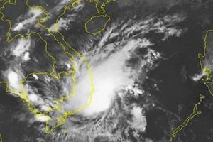 TIN BÃO KHẨN CẤP (bão số 8): Gió giật cấp 10, mưa lớn nhiều nơi
