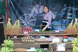 Chùm ảnh: Mãn nhãn ngắm đặc sản nức tiếng ở Hội cam Phù Yên