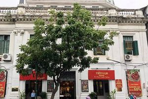 Thanh tra Chính phủ chỉ ra hàng loạt sai phạm vụ bán đấu giá tại Agrexport Hà Nội