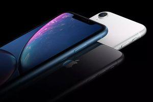 iPhone Xr bất ngờ bị Apple 'dội gáo nước lạnh'