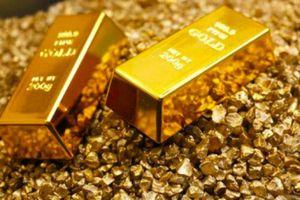 Giá vàng hôm nay 18/11: Liên tục tăng giá ấn tượng