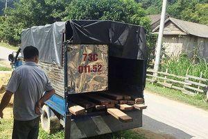 Quảng Bình: Kiểm lâm nổ súng bắt gỗ lậu, một người trúng đạn