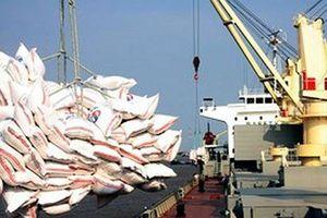 Xuất khẩu gạo chưa theo chuỗi liên kết sẽ khó bền vững
