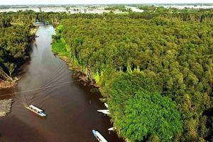 Nỗ lực chống biến đổi khí hậu của Việt Nam được đánh giá cao