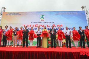 Khai mạc Triển lãm Sinh Vật Cảnh chào mừng Tuần 'Đại đoàn kết các dân tộc - Di sản văn hóa Việt Nam' năm 2018