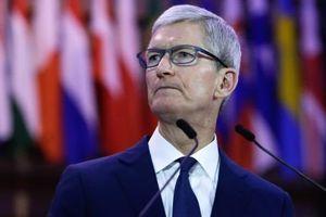 Trả hàng tỷ USD để trở thành công cụ tìm kiếm trên Safari, Google vẫn bị Apple 'đá đểu'