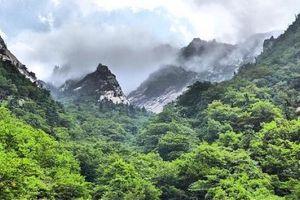 Kỷ niệm 20 năm Ngày mở tuyến du lịch tới núi Geumgang