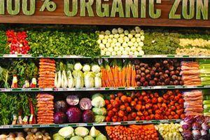 Thế giới ngày càng chuộng thực phẩm organic