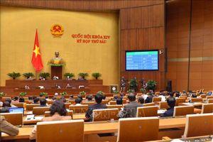Quốc hội thông qua Luật Đặc xá (sửa đổi), Luật Trồng trọt, Luật Chăn nuôi