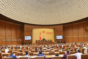 Chiều nay (19/11), Quốc hội biểu quyết thông qua Luật sửa đổi, bổ sung một số điều của Luật GD đại học