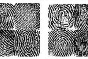 AI có thể tạo ra vân tay giả để mở khóa điện thoại