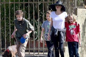 Angelina Jolie đưa 3 con ruột đi dạo, dập tắt tin đồn không hòa thuận