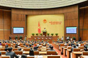 Hôm nay (19/11): Quốc hội thông qua 5 luật quan trọng