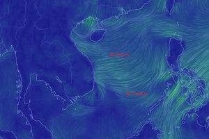 TP.HCM: Bão tan, lệnh 'giới nghiêm' tàu thuyền được bãi bỏ