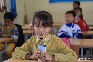 Vài chia sẻ về chương trình 'Sữa học đường'