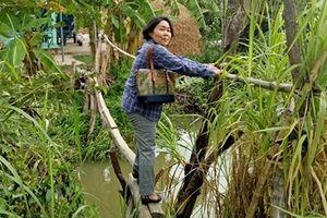 Người phụ nữ Nhật đam mê làm 'nông nghiệp sạch' trên đất Việt