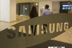Giá trị vốn hóa của tập đoàn Samsung giảm 12% trong năm nay