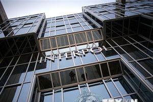 Đại hội đồng Interpol nhóm họp tại Dubai để bầu chủ tịch mới