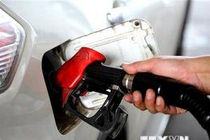 Giá dầu châu Á đi lên khi Saudi Arabia đề nghị OPEC giảm sản lượng