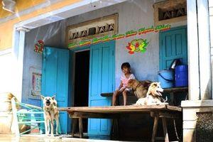 Ninh Thuận: Cuộc sống đảo lộn sau áp thấp nhiệt đới