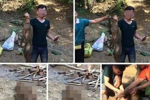 Triệu tập nam thanh niên khoe ảnh giết khỉ hoang 'tiếp bạn' trên facebook gây xôn xao dư luận