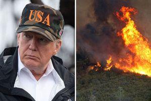 Tổng thống Trump liên tục mắc lỗi khi tới thăm California giữa thảm họa cháy rừng