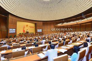 ĐBQH nêu ý kiến trước phiên thảo luận Dự án Luật thi hành án hình sự