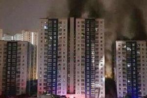 Vụ cháy chung cư Carina: GĐ Công ty Hùng Thanh được cho tại ngoại