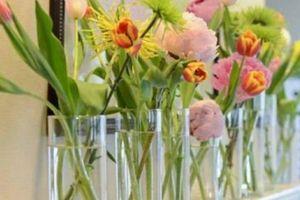 Ngẩn ngơ với những mẫu hoa cắm bình đẹp lạ