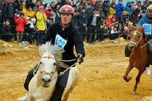 Xây trường đua ngựa 500 triệu USD: Hà Nội hưởng lợi gì?