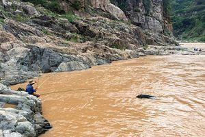 Săn loài cá được ví như 'thủy quái râu dài' trên dòng Sê San