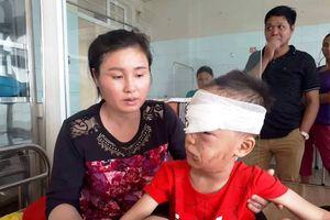 Thanh Hóa: Bé trai bị chó của gia đình nuôi tấn công kinh hoàng