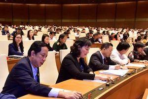 Quốc hội thông qua Luật Phòng, chống tham nhũng (sửa đổi) và Luật Công an nhân dân (sửa đổi)