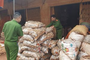 Kẽ hở khiến nông sản Việt bị đội lốt