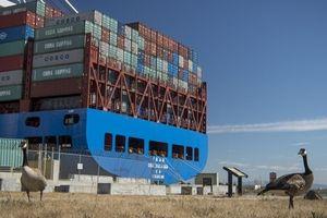Trung Quốc đang trả phần lớn chi phí cho cuộc chiến thương mại?