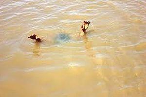 Nghệ An: Thêm 1 nam học sinh đuối nước thương tâm