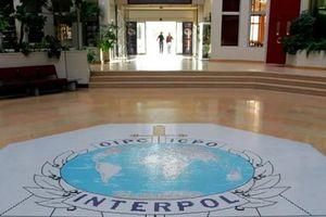 Nga: Chính trị hóa Interpol là không thể chấp nhận được